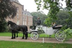 de_viervoeter_trouwen_met_friese_paarden