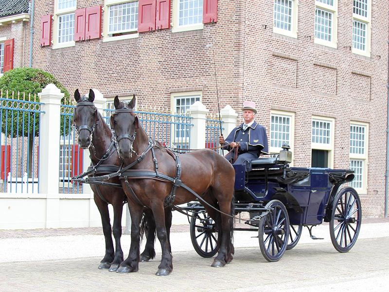 Blauwe_Landauer_Friese_paarden_Paleis_het_Loo